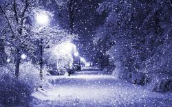Beautiful Winter Nature Wallpaper Hd Pictures 4 HD Wallpapers