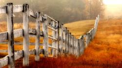 Beautiful Wood Fence Wallpaper