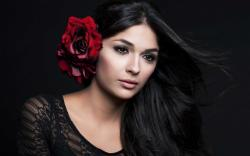 Beauty Woman Brunette Red Rose
