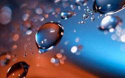 Water Drops Macro Best Hd Wallpaper Wallpapersnature Wallpapers 1920x1200px