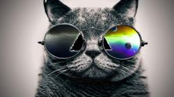 ... 41 Best and Coolest Collection HD Wallpapers Ever ...