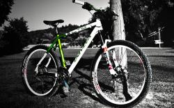 Bicycle Full hd wallpapers Free Download