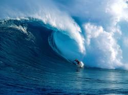 Big wave surfing in Maui, Hawaii