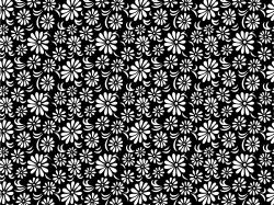 Related Wallpapers. Black and White Floral ...