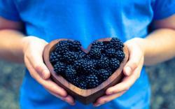 Blackberries Heart