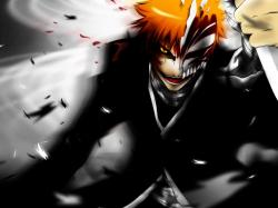 Bleach Wallpaper 2560 x 1920. «
