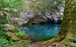 Blue pond in forest
