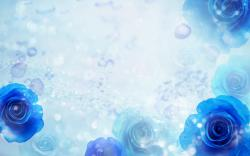 Desktop Wallpaper · Gallery · Windows 7 Blue Roses Windows ...