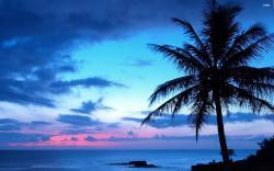 Blue sunset wallpaper 2560x1600