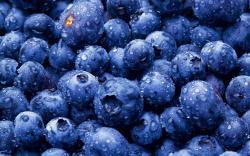 Blueberries Berries Close-Up HD Wallpaper