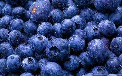 Alaskan Blueberry Slider BG