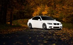 BMW M3 Road Autumn