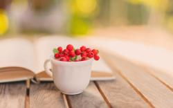 Book Cup Mug Berry Red Autumn