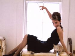 In Breakfast at Tiffany's, Holly Golightly (Audrey Hepburn) evades her murky past by adopting a glamorous, new identity. There are many beautiful and witty ...