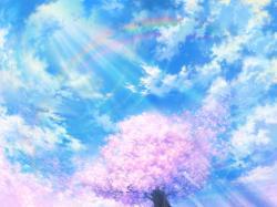 1600x1200 Wallpaper light, cherry, tree, sky, bright