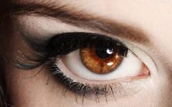 1920x1200, Brown, Eyes, Makeup, More, Wallpaper