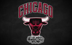 Chicago Bulls Picture