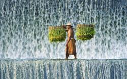 Burden man waterfall Wallpapers Pictures Photos Images. «