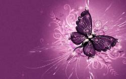 2880 x 1800 - 1962k - jpg 8653 Purple Butterfly ...