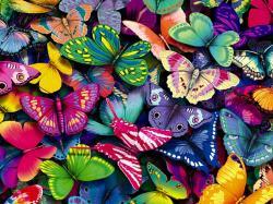 ... hd-butterfly-wallpaper
