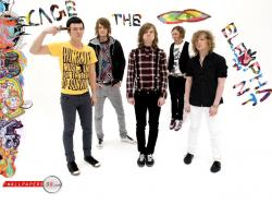Cage The Elephant Wallpaper 1024x768
