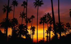 5 Best Cities in California for College Graduates - HomeSlice App   HomeSlice App