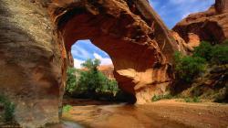 Grand Canyon free