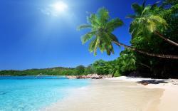 Tropical caribbean beach