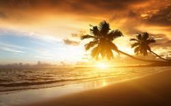 ... Caribbean Wallpaper ...