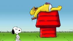 ... funny cartoon wallpapers | walljpeg