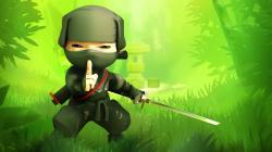 Cartoon Ninja Wallpaper