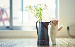 Cat Flower Vase