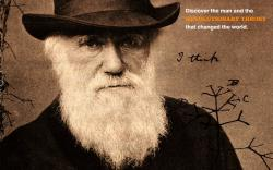 Beard darwin wallpaper HQ WALLPAPER - (#172813)