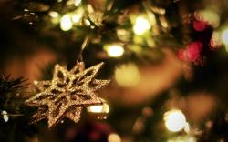 Images for Gt Christmas Lights Photography Wallpaper 2560x1600px