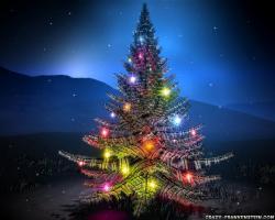 Wallpaper: Christmas Tree - Holy Night