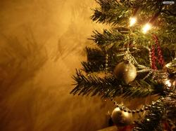 These desktop wallpapers are high definition and available in wide range of sizes and resolutions. Download Christmas Tree HD Wallpapers absolutely free for ...