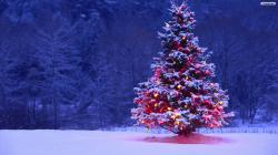 ... Christmas Tree Wallpaper 01 ...