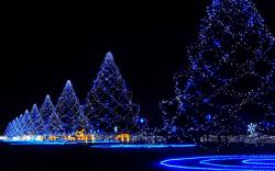 HD Wallpaper | Background ID:331566. 1680x1050 Holiday Christmas