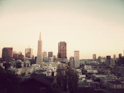 San Francisco Cityscape Picture