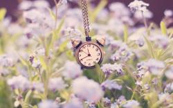 Clock Alarm Chain Flowers Nature