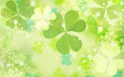 Clover Wallpaper 7949