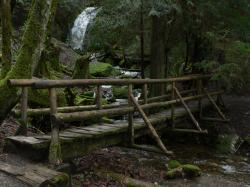 Coal Creek Falls 04067.JPG