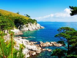 Coastal Summer wallpaper