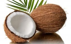 Fruit Fresh Coconut Hd N 2732473 : Fruit Fresh Coconut Hd N 2732473