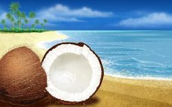 Download Coconut on the beach 1360x768 Wallpaper · Download Coconut on the beach 1366x768 Wallpaper