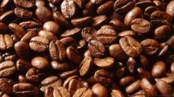 ... [orientation] => horizontal [ratio] => 16x9 [color] => [itemTitle] => Array ( [0] => wallpaper [1] => wallpapers ) [options] => Array ( ) ) Coffee beans ...