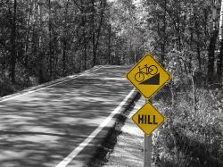 Bird's Hill Bike Path - Color Splash
