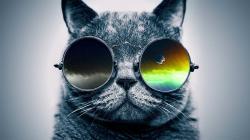 "Funky Rap / Hip-Hop Instrumental - ""Cool Catz""   Jazzy Guitar Beat   Syko Beats"