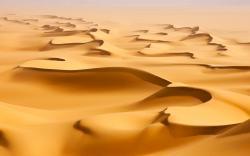 Desert Sand Landscape