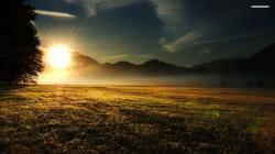 ... Grass Field at Dusk wallpaper 1920x1080 1080p ...